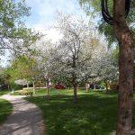 Park vor dem Rathaus